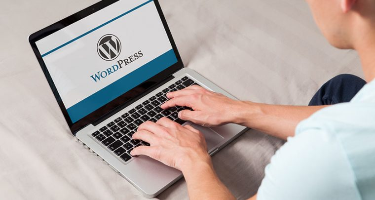 Insert PDF into Wordpress - Tutorial